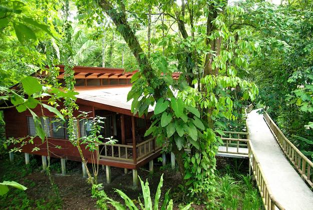 evergreen lodge tortuguero costa rica bungalows