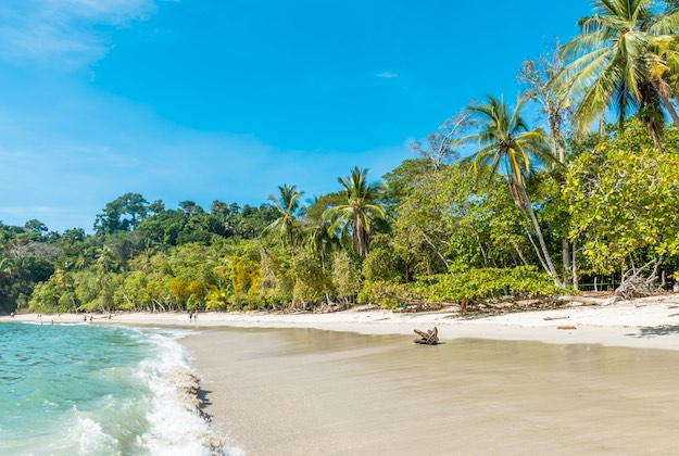 manuel antonio national park tropical beach