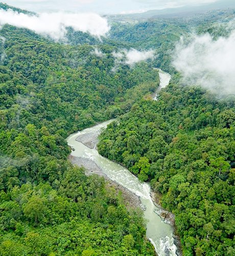 pacuare river and rainforest in costa rica