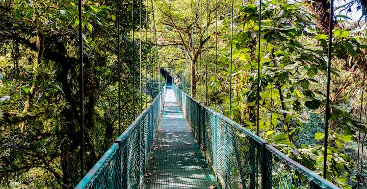 hanging bridges tour arenal costa rica