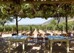 lunch at a vineyard in Mendoza Argentina