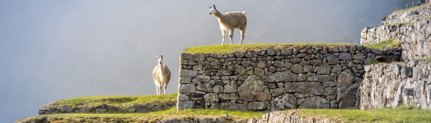 tour of peru and machu picchu