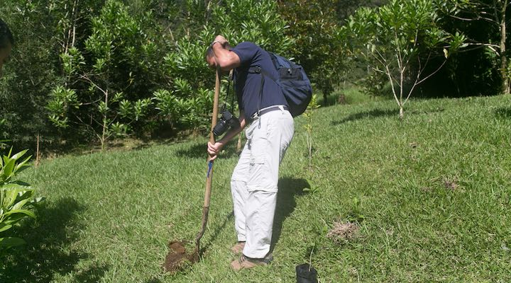 tree planting with the latin america travel company