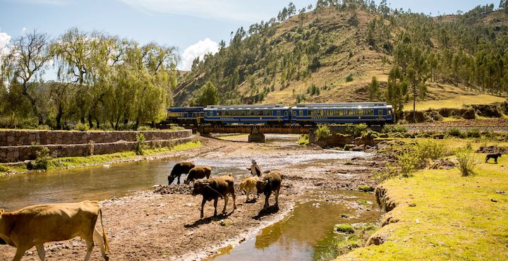 vistadome train to machu picchu