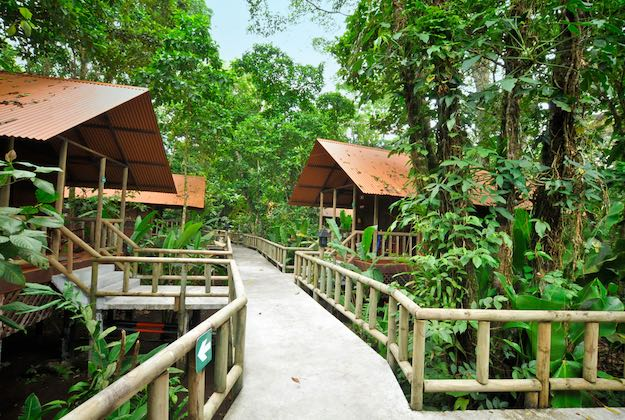 aninga lodge tortuguero raised walkways