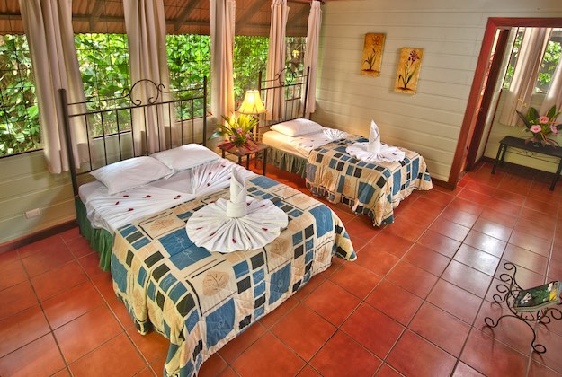 aninga lodge tortuguero twin queen beds