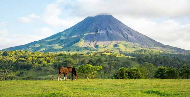 horses grazing under arenal volcano