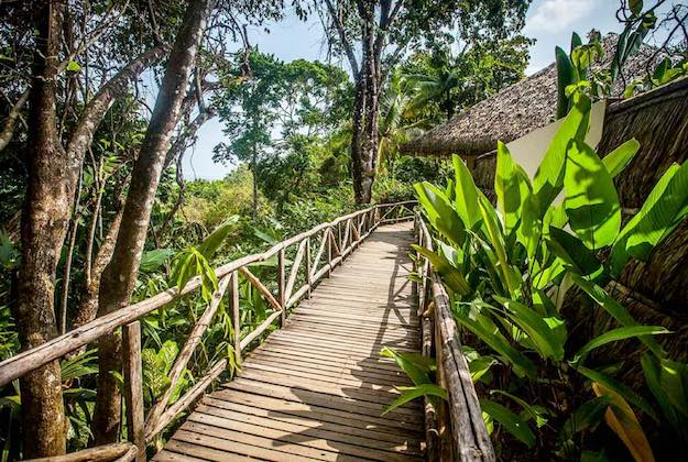 lapa rios eco lodge walkways