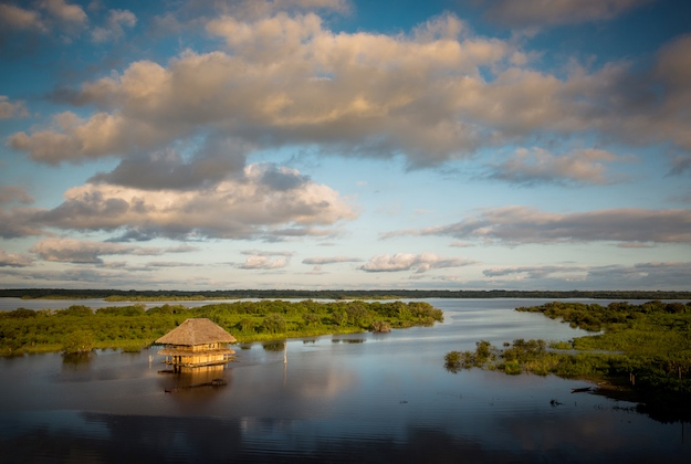 amazon panorama in iquitos peru