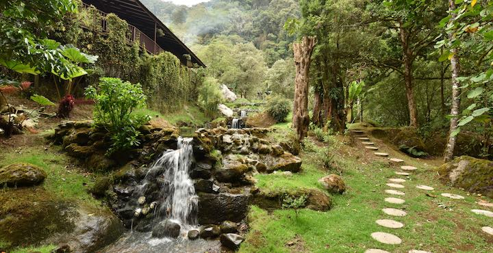cloud forest at trogon lodge costa rica