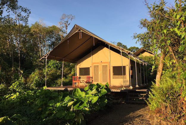 scalesia lodge galapagos tent