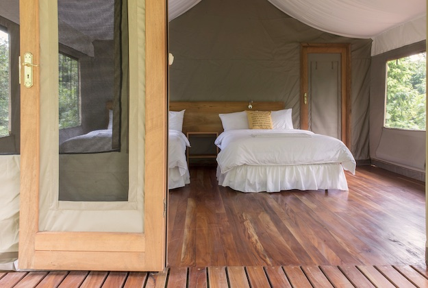 scalesia lodge galapagos tented suite